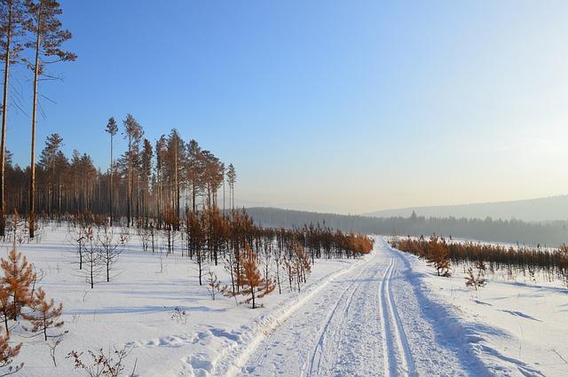 Бюро Постышева. Путешествуя по Сибири