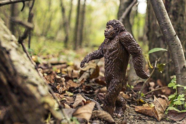 Бюро Постышева. Неандертальцы XXI века